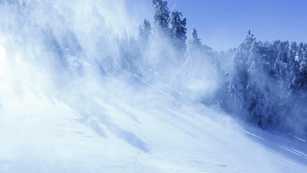Снежная метель