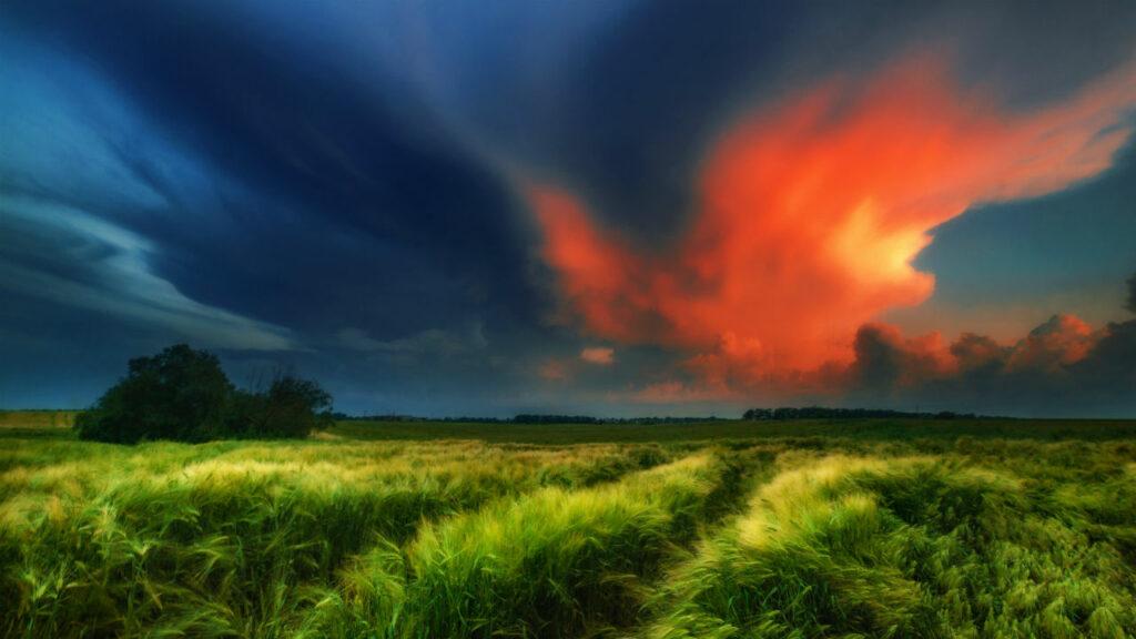 Вспышки в облаках над полем