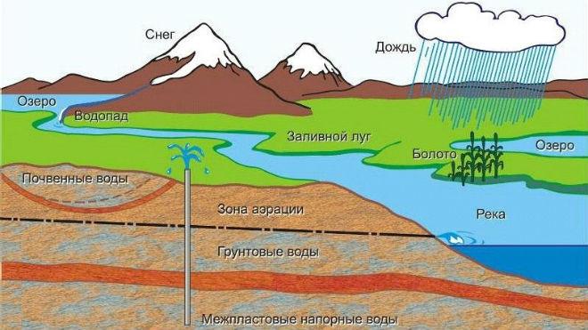 Разновидности вод