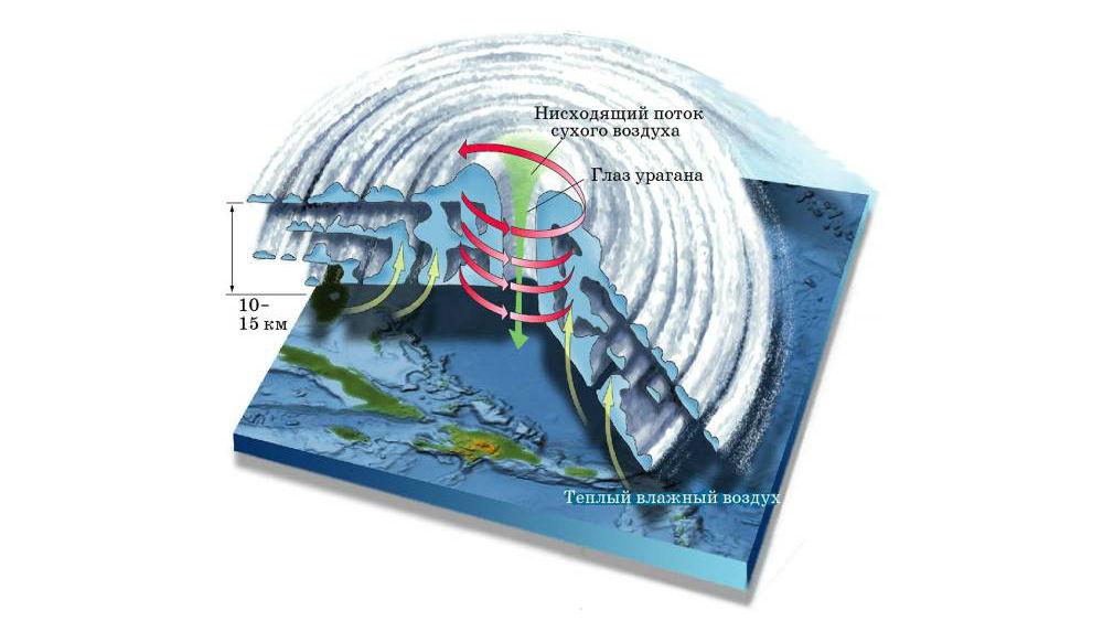 Строение циклона