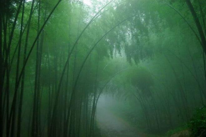 Туман в долине Хэйчжу