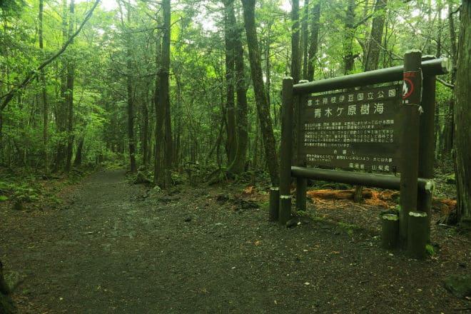 Табличка с предупреждением в лесу Аокигахара