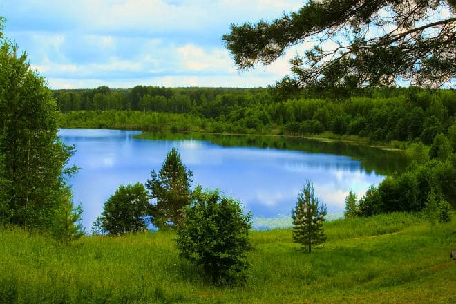 Берег озера Светлояр
