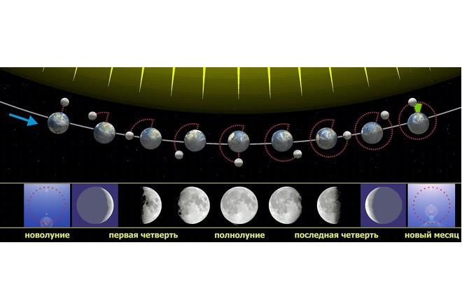 Связь фаз Луны с её положением относительно Солнца и Земли, при наблюдении из Северного полушария Земли